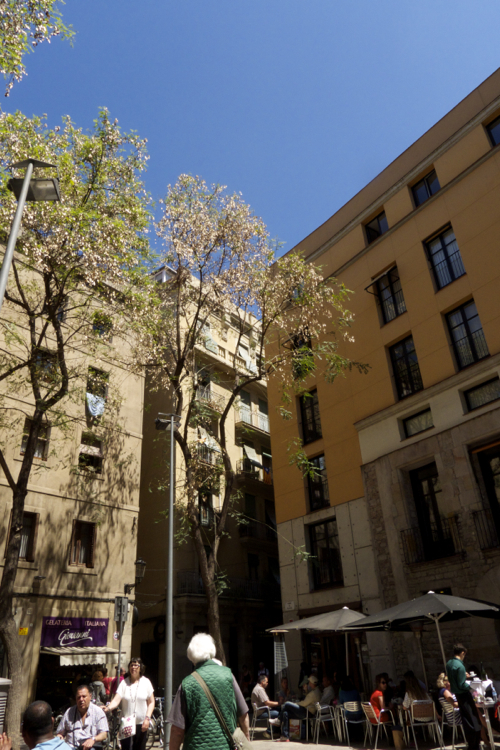 barcelona_501