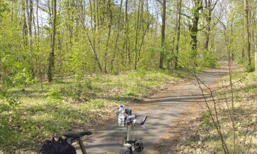 ベルリン郊外をサイクリング