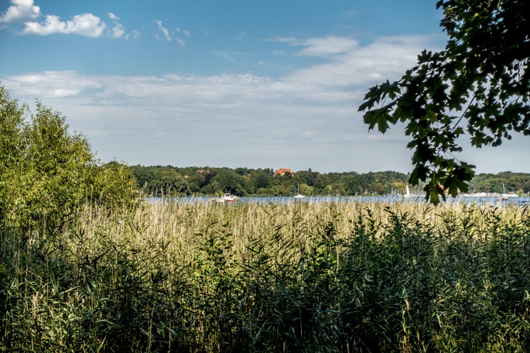 wannsee11