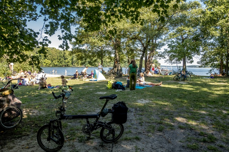 wannsee14