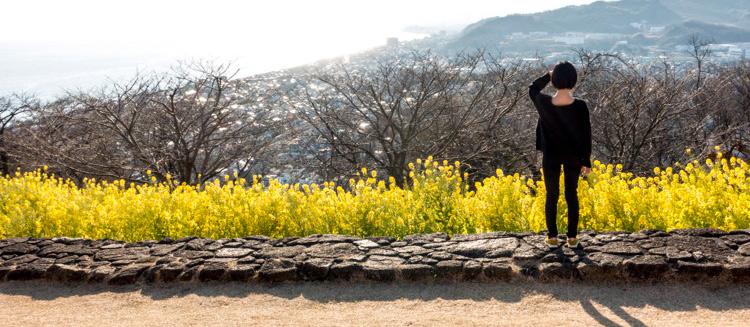 意外と知られていない景勝ポイント  神奈川県二宮町の吾妻山公園に行ってきた