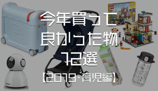 【2019年版・育児編】今年買って良かったモノ 12選【レゴ|キャリーバッグ|テント等】